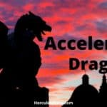 How To Play The Accelerated Dragon: Beginner's Breakdown