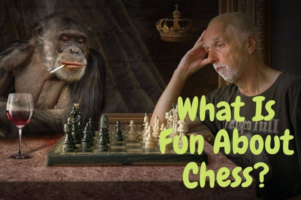 what is fun about chess
